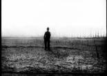 Charlie Ward - Image: Sound&Fury