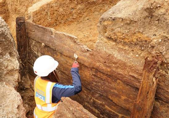An archaeologist excavates the remarkably well-preserved timbers of the inner face of the theatres dog-fighting pit